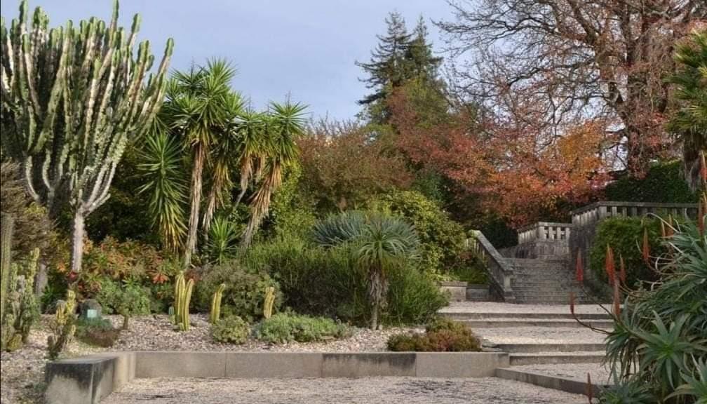 Novo parque do Porto tem 13 hectares e milhares de espécies botânicas