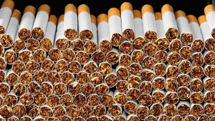 GNR apreende 16.720 cigarros e 410 litros de bebidas alcoólicas no norte do país