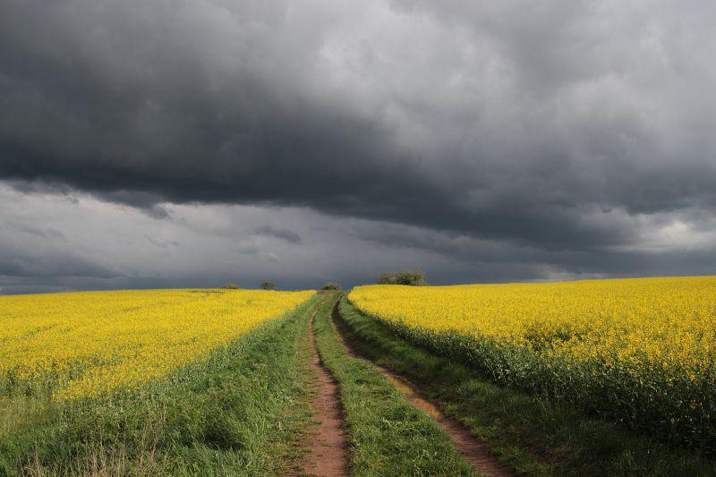 IPMA prevê início de semana com alguma precipitação