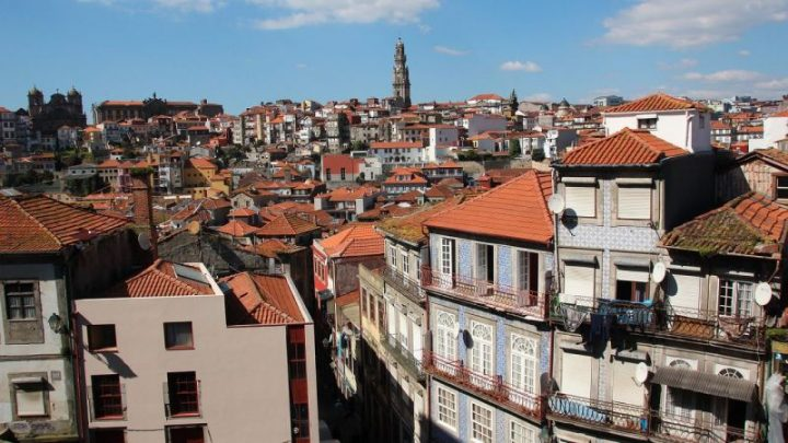 Programa Porto Solidário já homologou 419 candidaturas