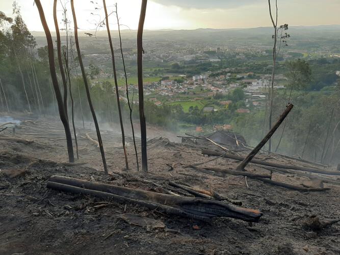 Incêndio deflagrou no Monte de Nossa Senhora da Assunção em Santo Tirso